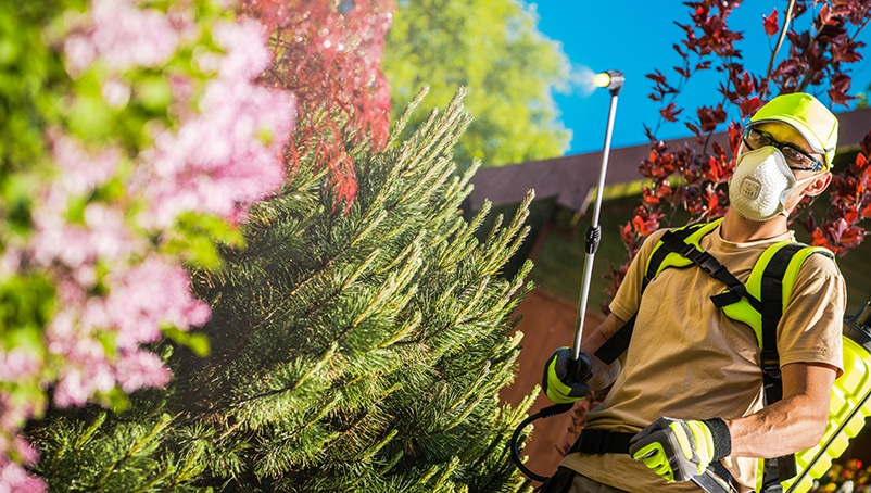 Landscaper Licensing Requirements by State: A Comprehensive Guide