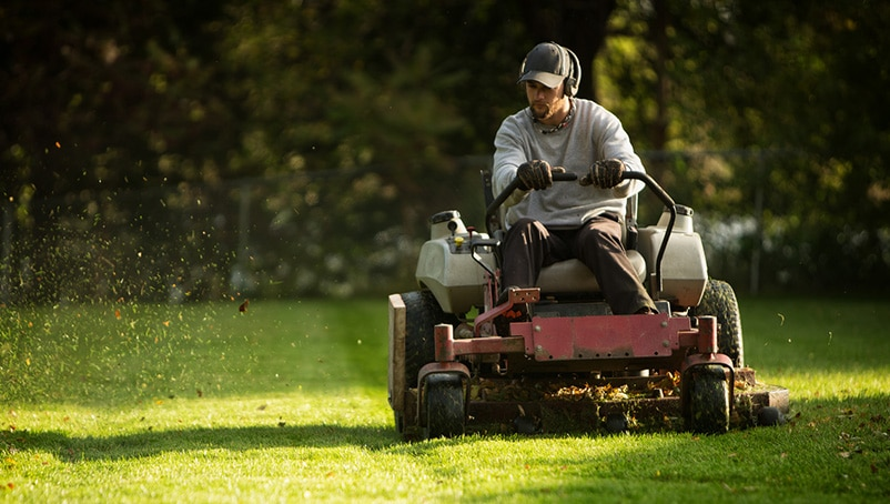 Build a Lawn Care Business Plan